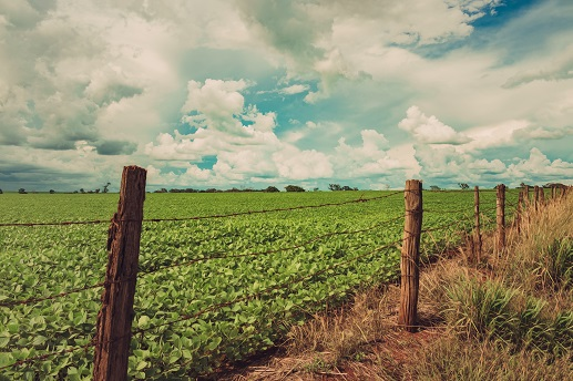 Como regularizar um imóvel rural