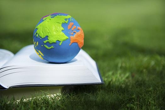 Dicionário de termos ambientais mais utilizados no dia a dia
