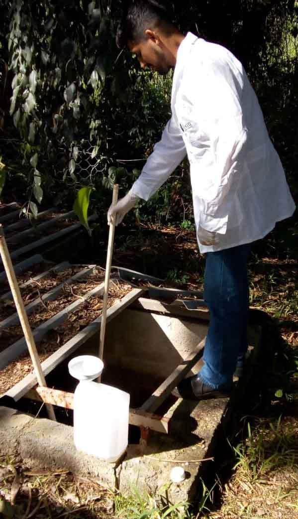 Entenda as etapas da análise de amostras ambientais: amostragem, coleta, conservação e processamento de amostras