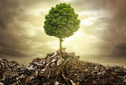 Qual é a função da reciclagem e a sua importância para o meio ambiente?