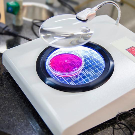 Analise microbiologica da agua potavel