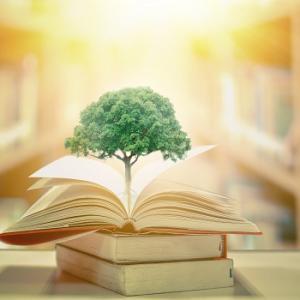 Livros de meio ambiente e sustentabilidade para os amantes da natureza
