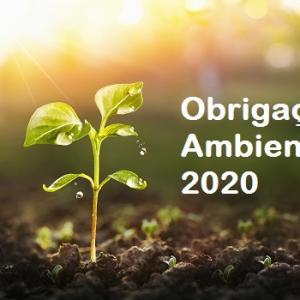Obrigações ambientais em 2020