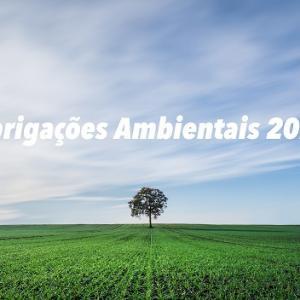 Obrigações ambientais em 2021