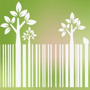 Pesquisa comprova: Consumidores preferem empresas sustentáveis